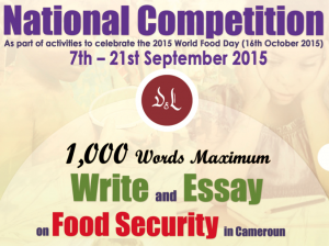 National Essay Comp1
