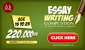 National Essay Competition On Industrialization In Africa  Denis  With The Intention To Mobilize The Commitment Of The International  Community To The Industrialization Of Africa The United Nations  Organization Decided  Example English Essay also Essay In English  Thesis Of An Essay