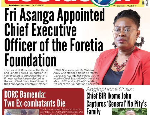 Media Reactions to Foretia Foundation CEO Appointment